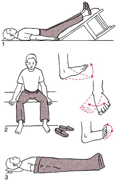 Williams Back Exercises