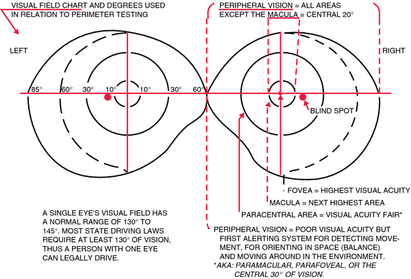 Visual acuity | definition of visual acuity by Medical